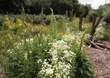 Garten-und-Landschaftsbau-02